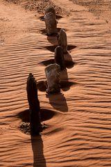 Steine, Sand und Wind