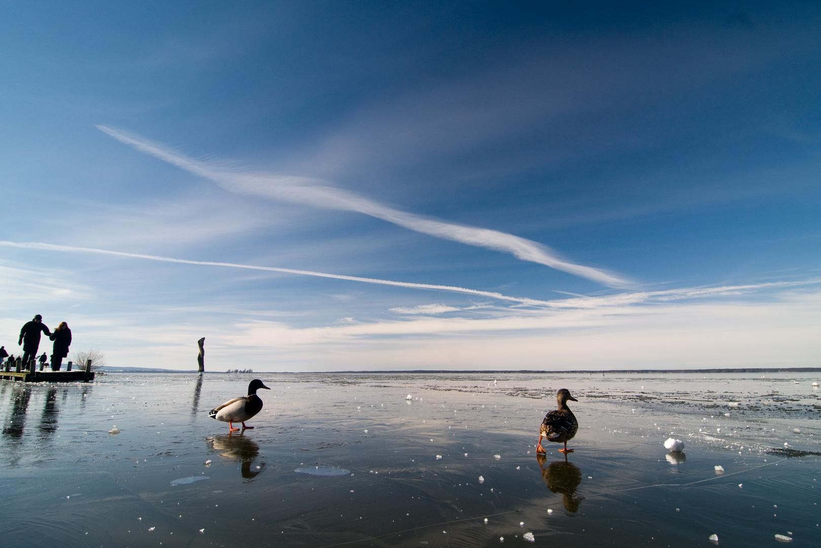 Steinhuder Meer, Winterzeit