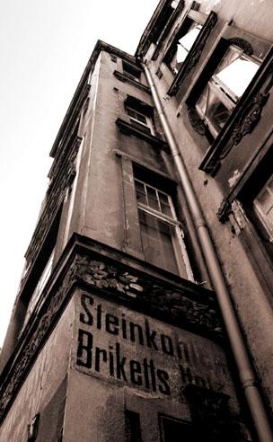 Steinkohlenbriketts