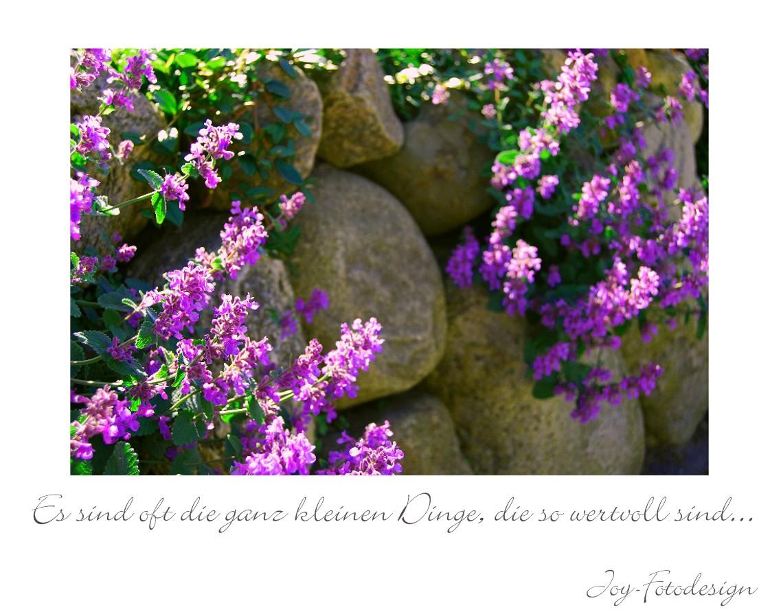 Steinmauer auf Sylt...