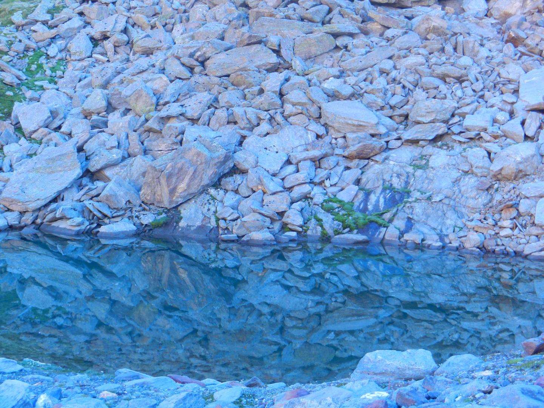 Steinspiegelung beim Hochwildehaus