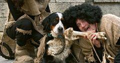 Steinzeitmenschen beim Abendessen mit ihrem Hund!