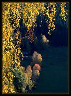 Steirischer Herbst (3)