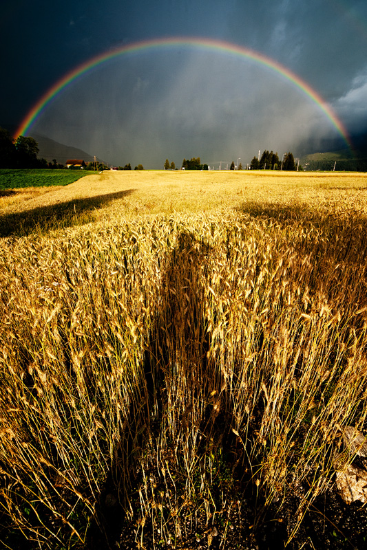 steirischer Regenbogen