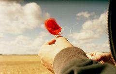 stellt man irgendwann fest, dass sich alles bewegt, egal ob man bleibt oder geht.