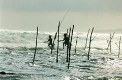 Stelzenfischer bei hohen Wellen...