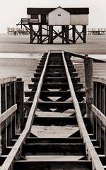 stelzenhäuser 02-1991