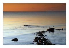 Stepping stones - Der Weg ins Meer2
