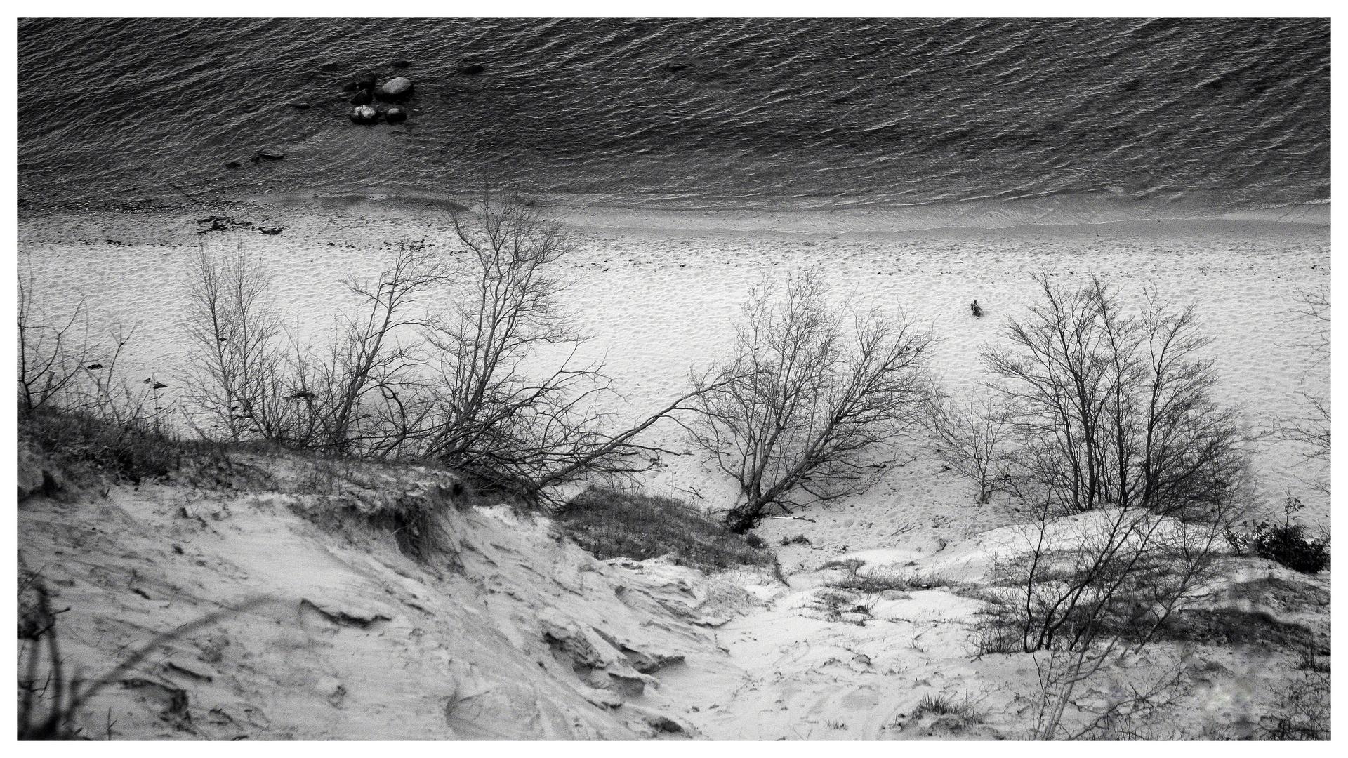 ° sterbender Strand °