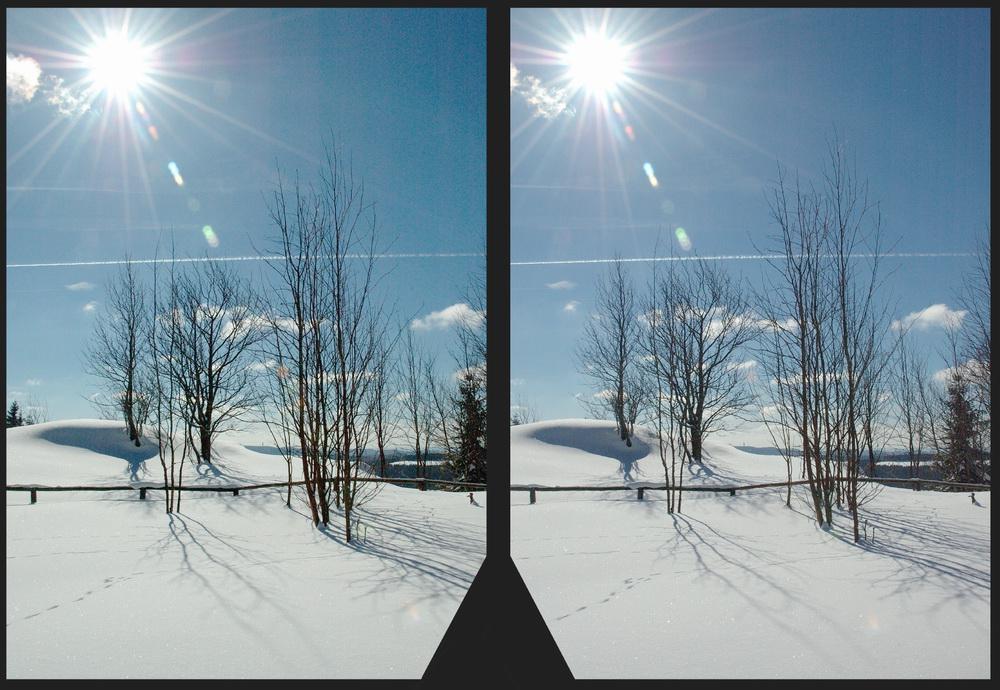 Stereogegenlichtexperiment