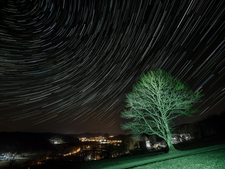 Sternen-Baum