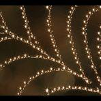 Sternen-Netz