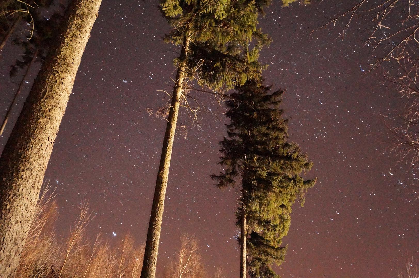 Sternenhimmel über dem Erzgebirge