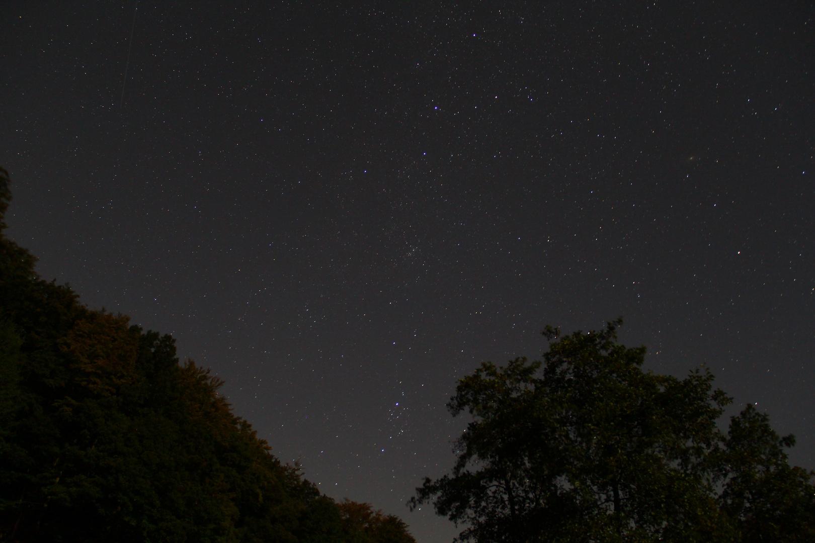 Sternenhimmel über dem Schwarzwald