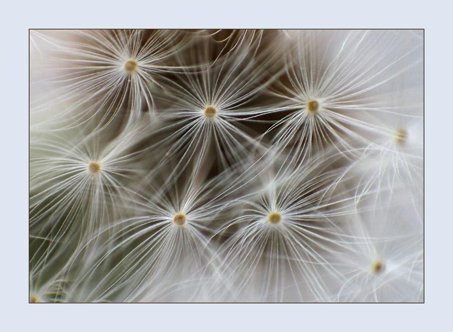 Sternenkugel im Detail
