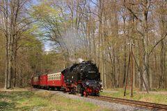 Sternhaus-Ramberg, 99 6001-4