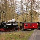 Sternhaus-Ramberg, 99 6102-0