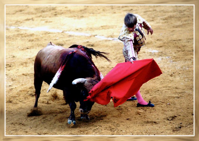Stierkampf in einer Arena