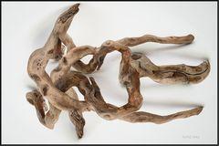 Still mit Holz, gefunden am Rhein