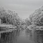... still ruht der See (iR)