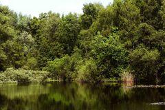 still ruht der See - mit Spiegelung