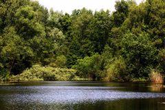 still ruht der See - ohne Spiegelung
