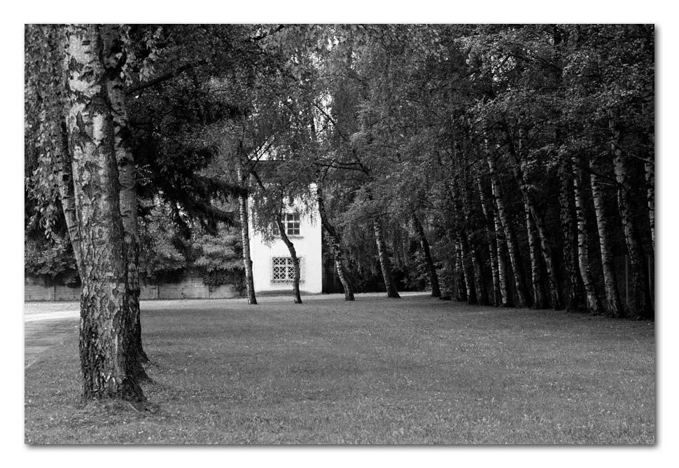 Still und friedlich zwischen den Bäumen steht er da...