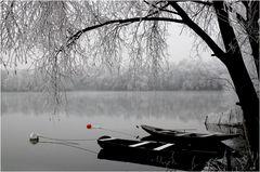 Stille am Grötzinger Baggersee