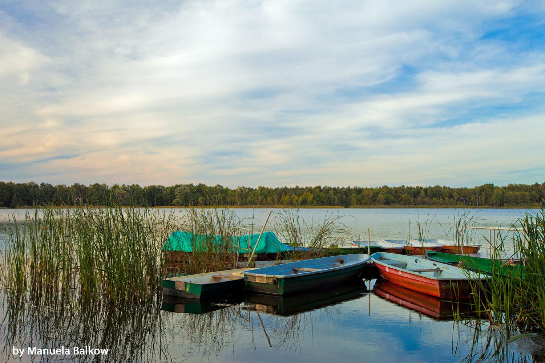 Stille am Köthener See