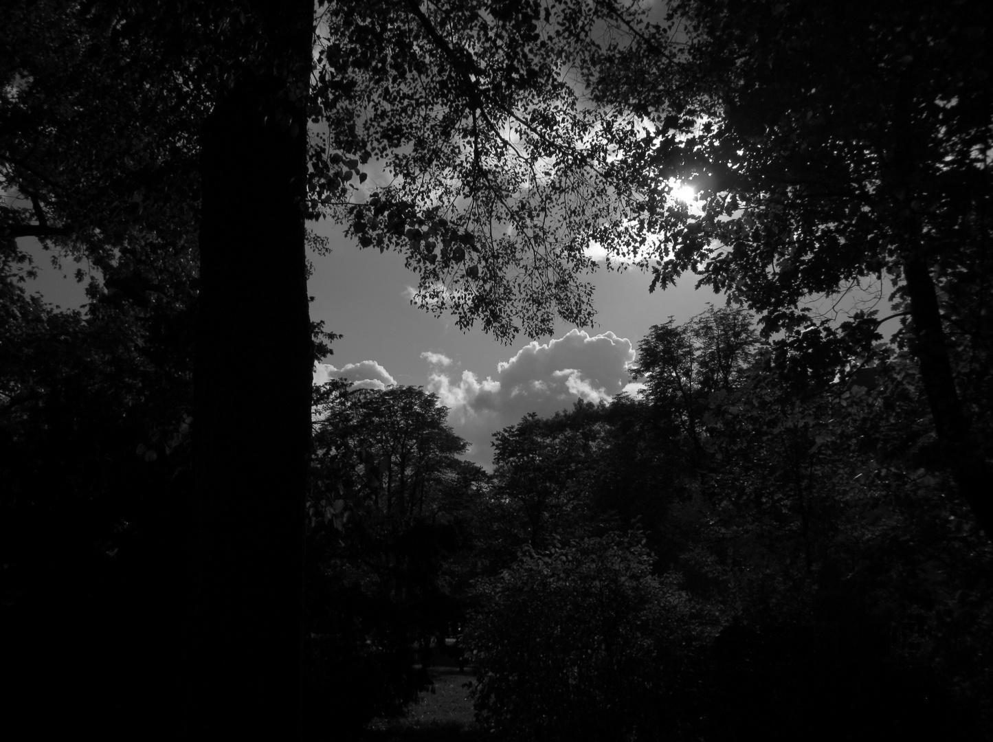 Stille der Natur