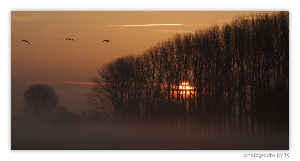Stille - Ein neuer Tag beginnt ...