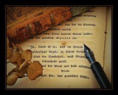 * stille Poesie *
