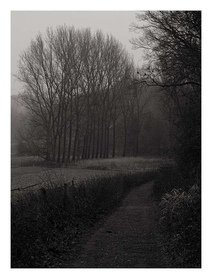 Stille Wege findet...