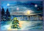 Stille Winternacht .....