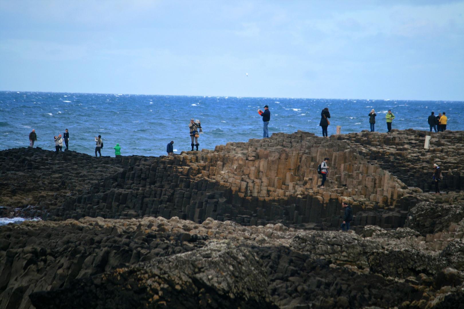 Stilleben am Giant's Causeway