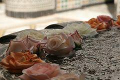 Stilleben im Riad - Marrakech 2