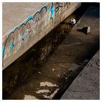 Stilleben mit Wasser, Graffiti, Stein und Ball