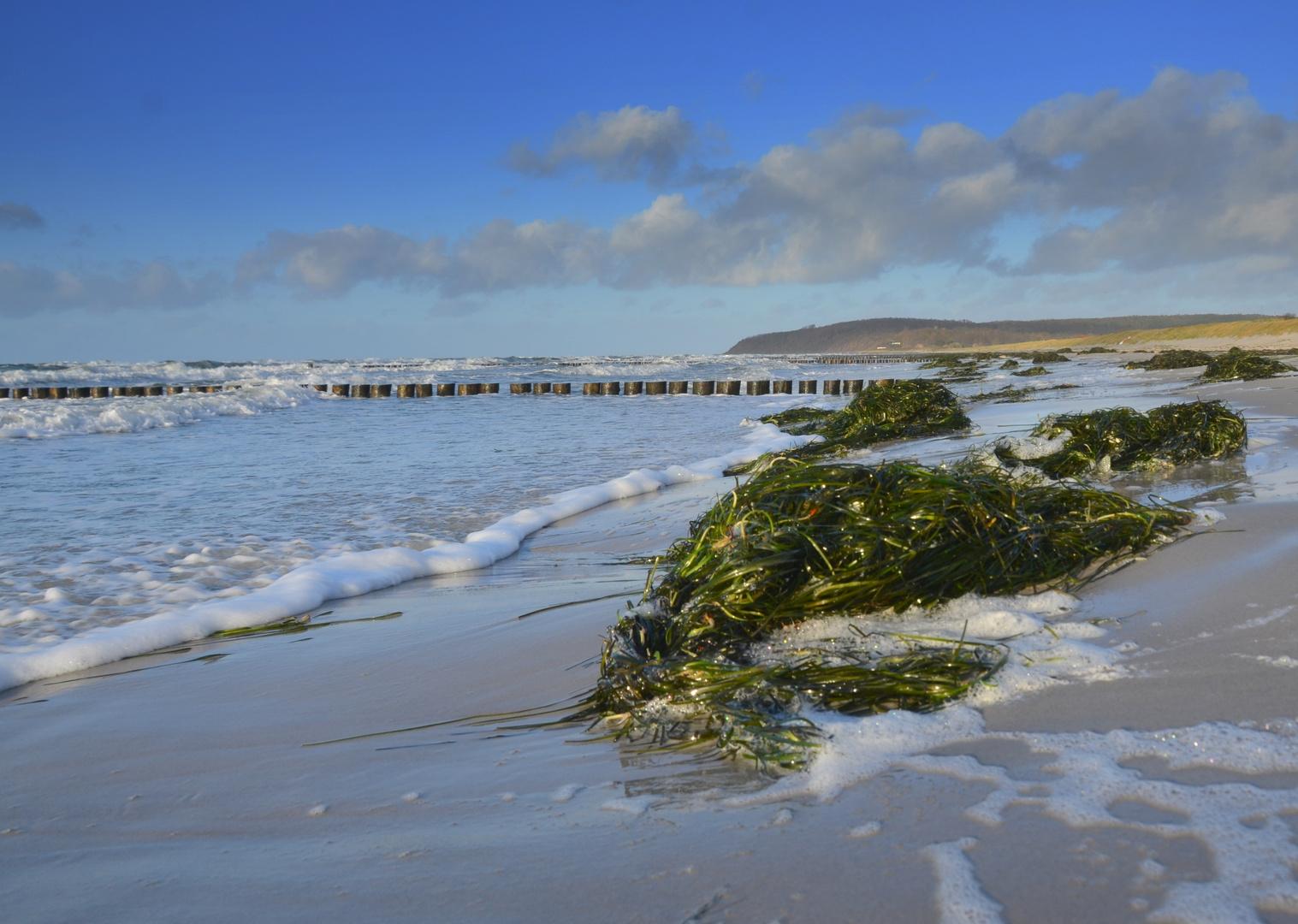 Stiller Strand