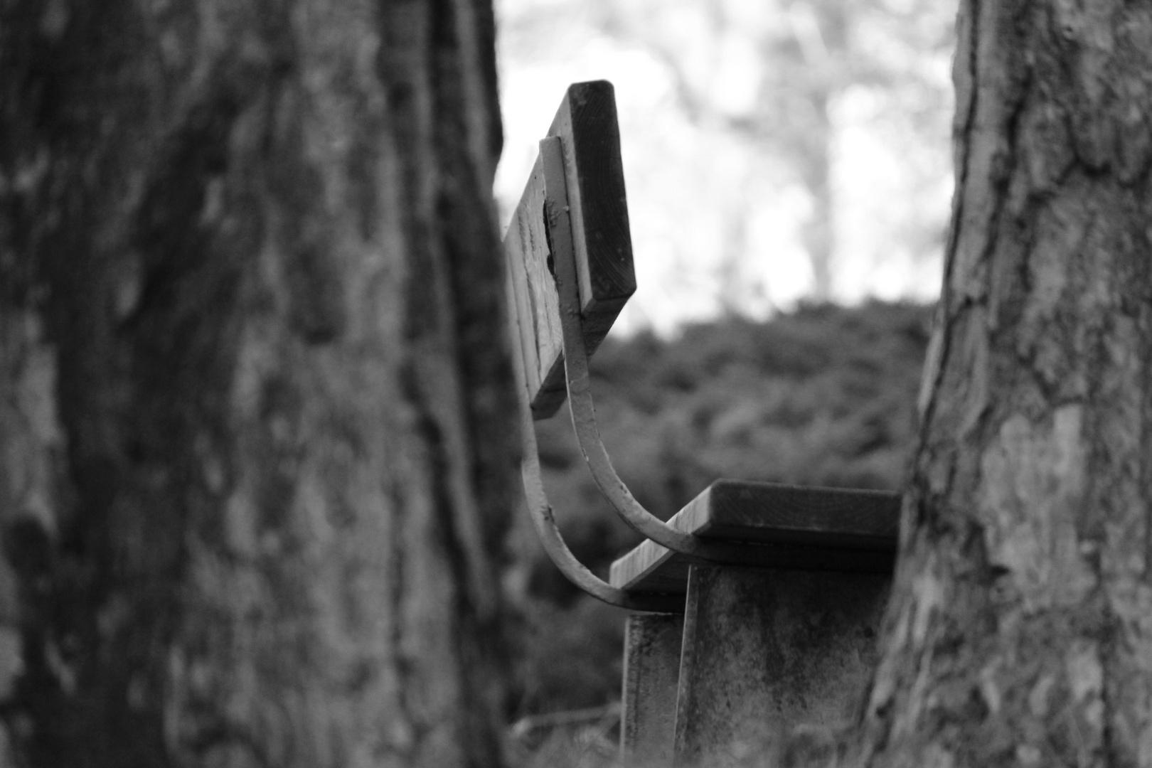Stille_und_Einsamkeit