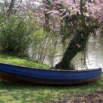 """Stillleben oder """"Boot sucht Wasser für zärtliche Berührungen"""""""
