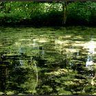 Stillwasser