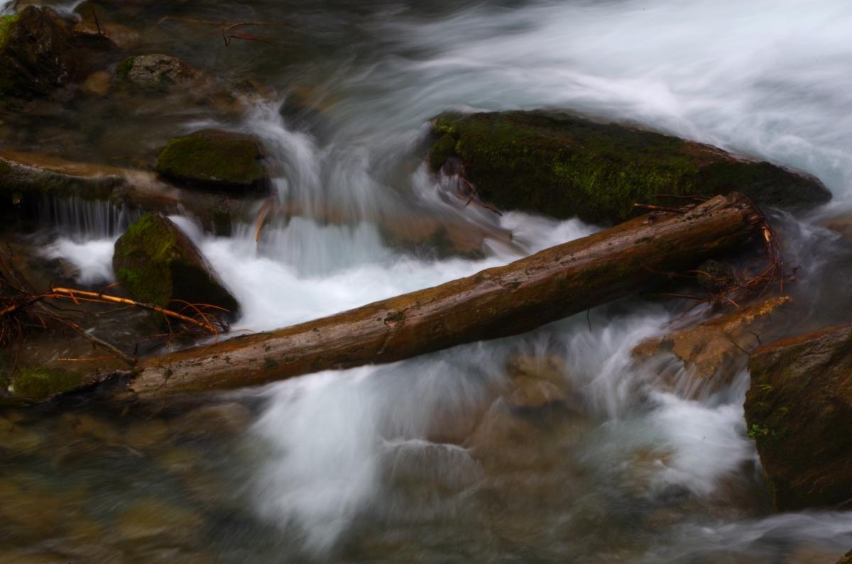 Stimmiger Fluss mit Baumstamm
