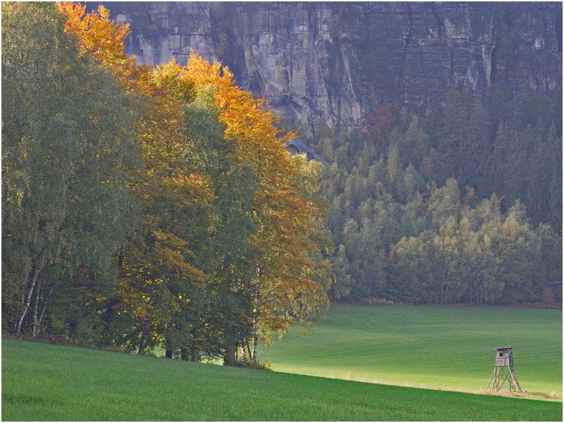 Stimmung in der Sächsichen Schweiz