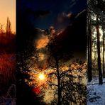 Stimmungsmomente in der Natur