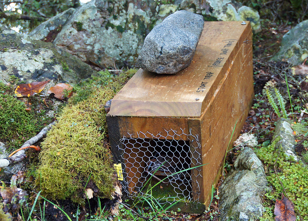 ..Stoat Trap..
