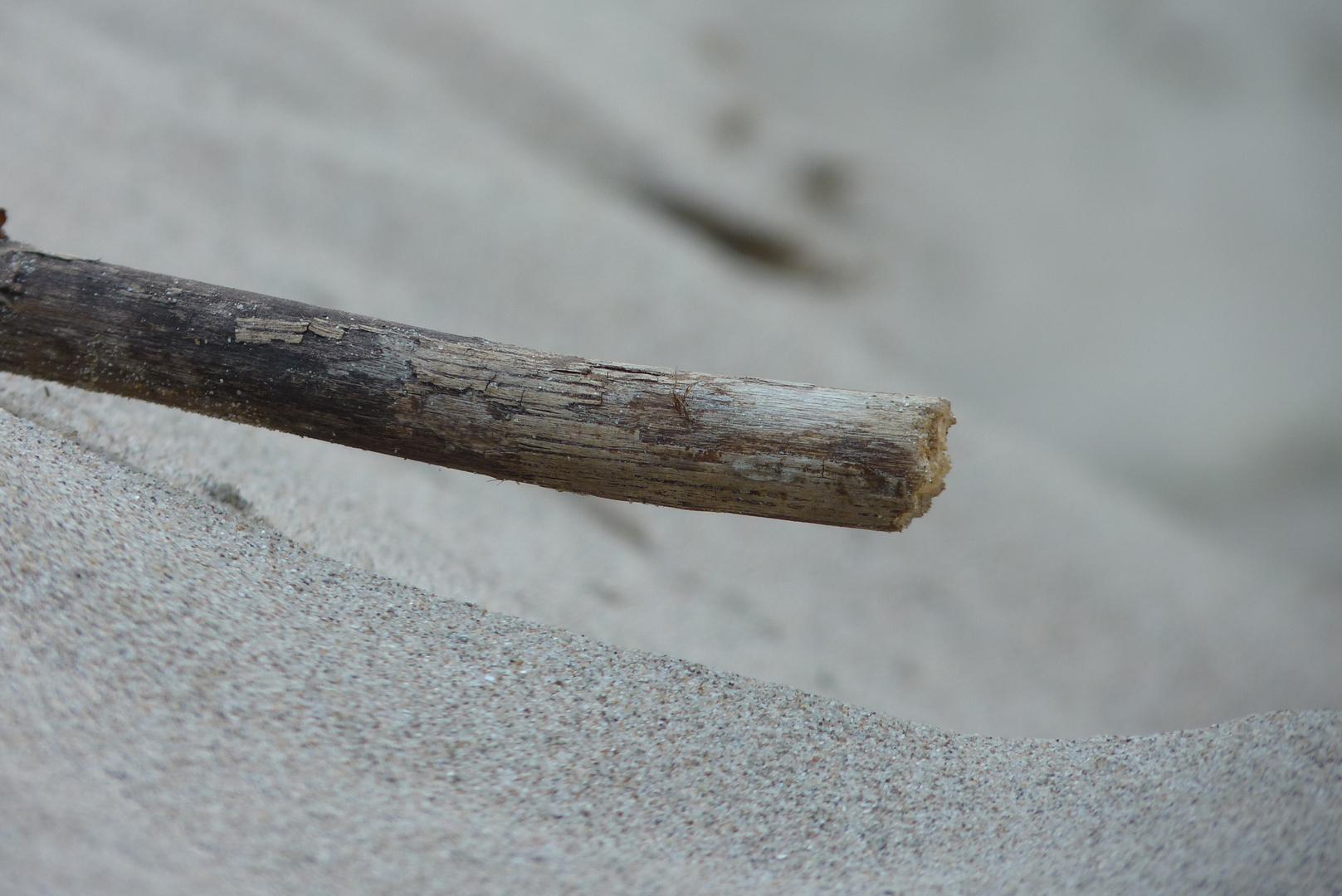 Stock im Sand