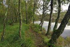 Stodthagen 11 - Kaltenhofer Moor