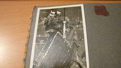 Störche in Besigheim 1940