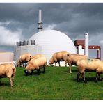 Störfaktor Atomreaktor