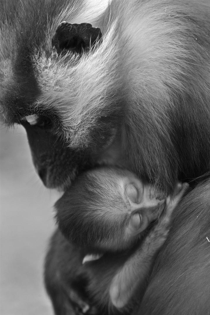 Stolz und Liebe einer Mutter!
